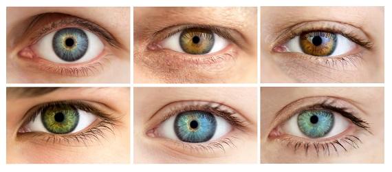 barvy očí