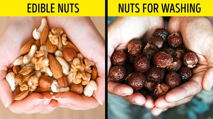 Ořechy na mytí